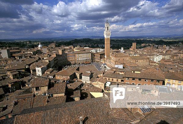 Rote Ziegeldächer  Campanile-Turm  Campo  Siena  Toskana  Italien  Europa
