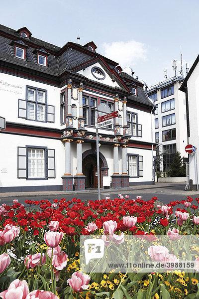 Stadtmuseum  Altstadt  Andernach  Rheinland-Pfalz  Deutschland  Europa