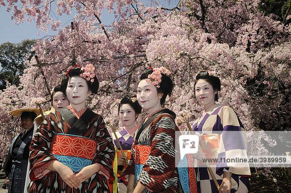 Japanerinnen im Kimono  Prozessionsteilnehmerinnen  Hirano Schrein  Kyoto  Japan  Ostasien  Asien