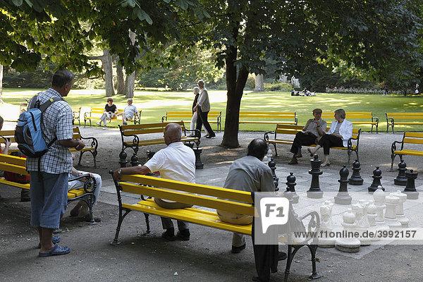 Schachspiel im Hofgarten  Innsbruck  Tirol  Österreich  Europa