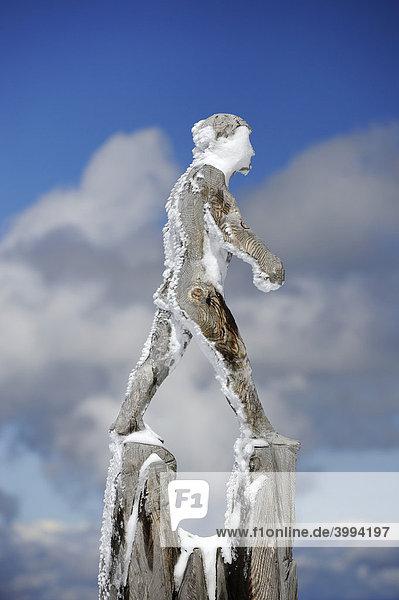 Holzskulptur des Künstlers Mario Gasser auf dem österreichischen Teil der Zugspitze  Bezirk Reutte  Tirol  Österreich  Europa Holzskulptur des Künstlers Mario Gasser auf dem österreichischen Teil der Zugspitze, Bezirk Reutte, Tirol, Österreich, Europa