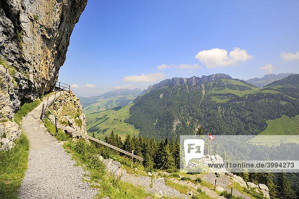 Wanderweg zum Wildkirchli unterhalb der Ebenalp  Kanton Appenzell Innerrhoden  Schweiz  Europa