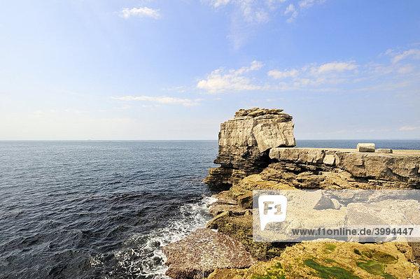 Küstenlandschaft auf Isle of Portland  Grafschaft Dorset  England  Großbritannien  Europa