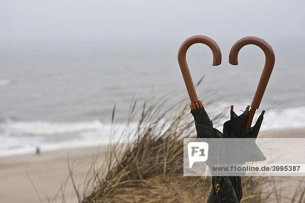 Regenschirme  Regenwetter am roten Kliff  Kampen  Sylt  nordfriesische Insel  Schleswig-Holstein  Deutschland  Europa