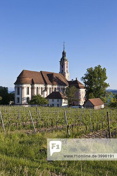 Die Basilika von Birnau  Birnau am Bodensee  Baden-Württemberg  Deutschland  Europa