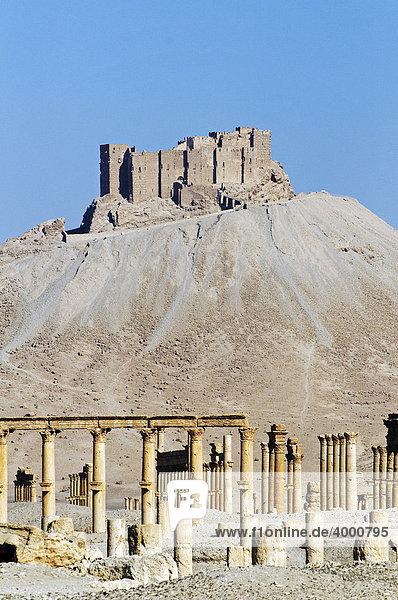 Ruinen der Ausgrabungsstätte Palmyra  hinten Burg Qala'at Ibn Ma'n  Tadmur  Syrien  Asien