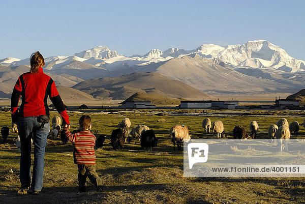 Junge Frau und kleines Kind laufen zu einer Schafherde vor verschneitem Gebirgszug des Cho Oyo  8112 m  in der Hochebene von Tingri mit tibetischen Gebäuden des Dorfes Old Tingri  Tibet  China  Asien