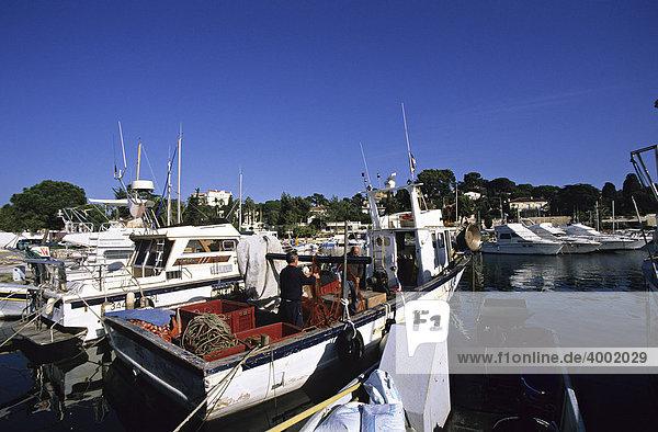 Fischer im Hafen von Juan-les-Pins  Frankreich  Europa