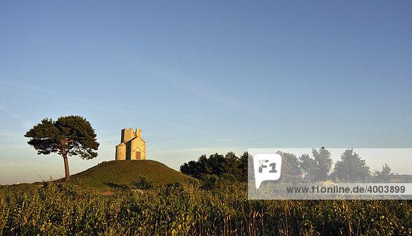 Bäume und romanische St.-Nikolaus-Kirche auf einem Erdhügel in den Feldern von Prahulje in der Nähe von Nin in Dalmatien  Kroatien  Europa