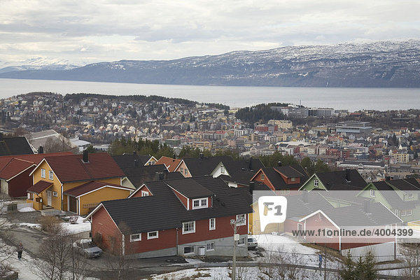 View over the city of Narvik on Ofotfjord  Norway  Europe