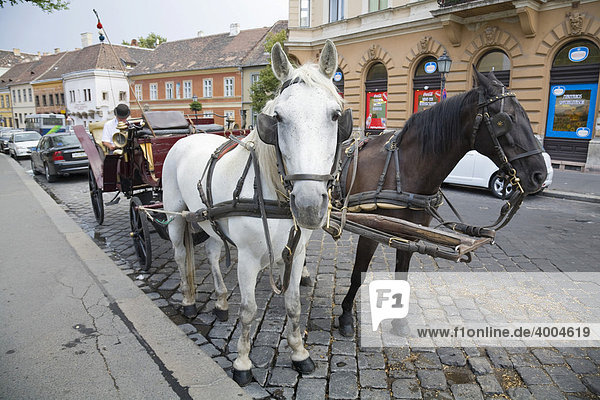 Fiaker  traditional horse-drawn carriage on the castle hill in Budapest  Hungary