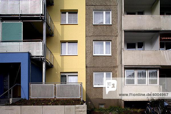 Sanierter und unsanierter Plattenbau  Dessau  Sachsen-Anhalt  Deutschland  Europa