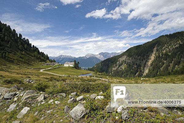 Stamser-Alm  Stams  Tirol  Österreich  Europa