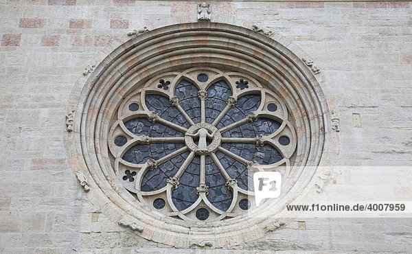 Rosette an der Fassade der Kathedrale von Trient  Trento  Trentino  Südtirol  Italien  Europa