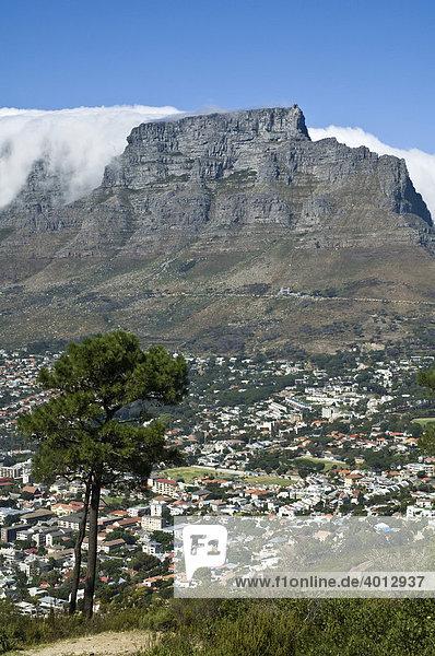 Tafelberg in Kapstadt  Aussicht vom Signal Hill  Südafrika