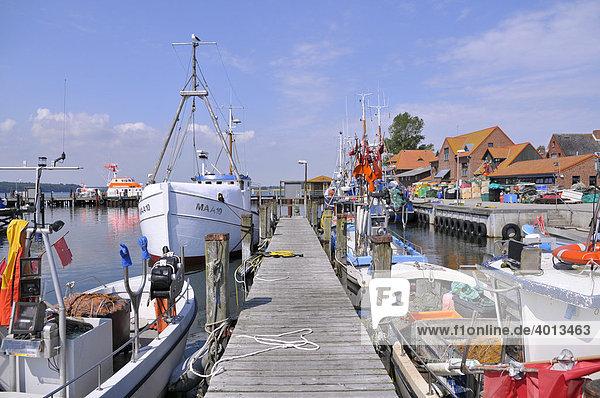 Ostseehafen Maasholm  Schleimündung  Schleswig-Holstein  Norddeutschland  Deutschland  Europa