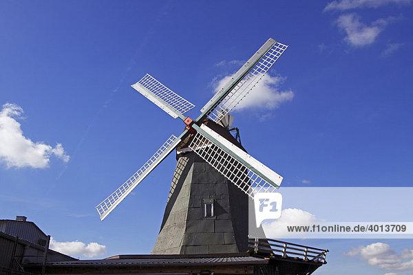 Alte Windmühle Anna  Galerieholländer mit Windrose  Süderhastedt  Landkreis Dithmarschen  Schleswig-Holstein  Deutschland