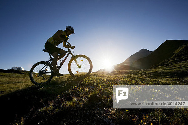Mountain biker  Zillertal Alps  Mayerhofen  North Tyrol  Austria  Europe