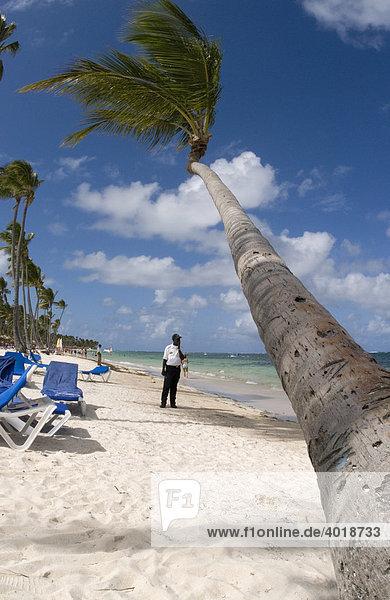 Wachdienst am Sandstrand mit Kokospalme (Cocos nucifera)  Punta Cana  Dominikanische Republik  Mittelamerika