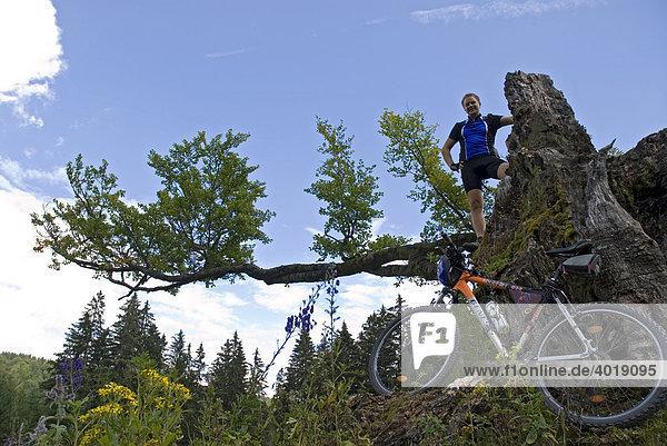 Mountainbiking  Kalkalpen National Park  Upper Austria  Europe