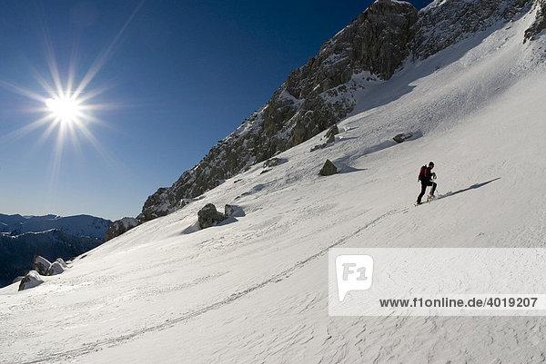 Skitour auf das Stadelfeld  Nationalpark Gesäuse  Steiermark  Österreich  Europa