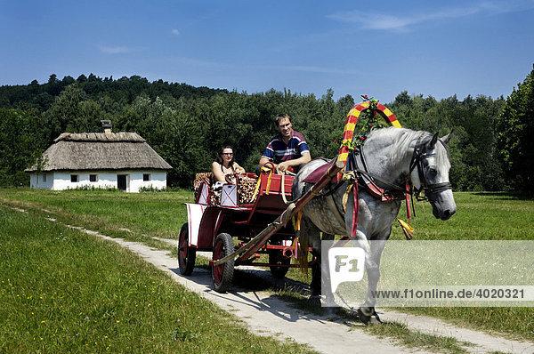 Leute in einer Pferdekutsche  ländliche Szene  Ukraine  Osteuropa