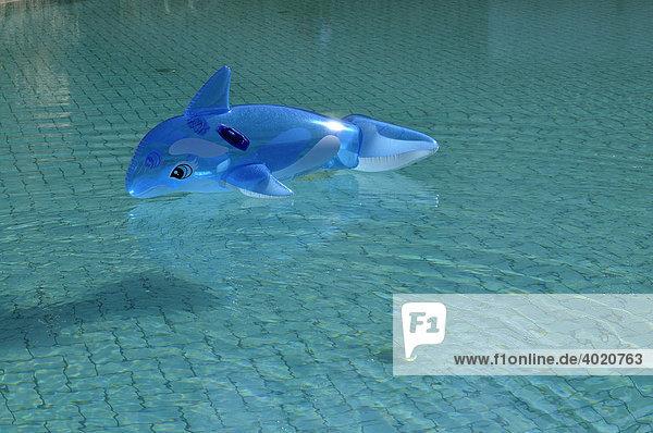 Blauer aufblasbarer Delphin treibt in blauem Pool