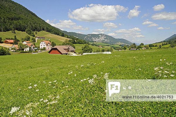 Wiesen  Berge  Bauernhof  bäuerliche Landschaft bei Moutier  Schweiz  Schweizer Jura  Kanton Bern  Schweiz  Europa Kanton Bern