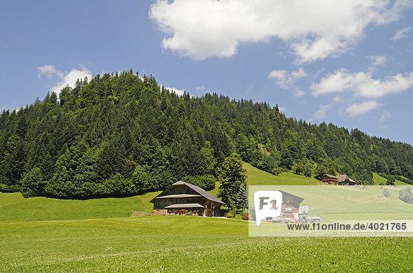 Wiesen  Berge  Bauernhof  bäuerliche Landschaft bei Langnau  Emmental  Kanton Bern  Schweiz  Europa Kanton Bern