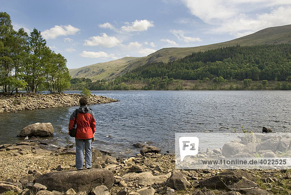 Woman standing on the shore of Lake Thirlmere  Lake District  Cumbria  North England  Great Britain  Europe