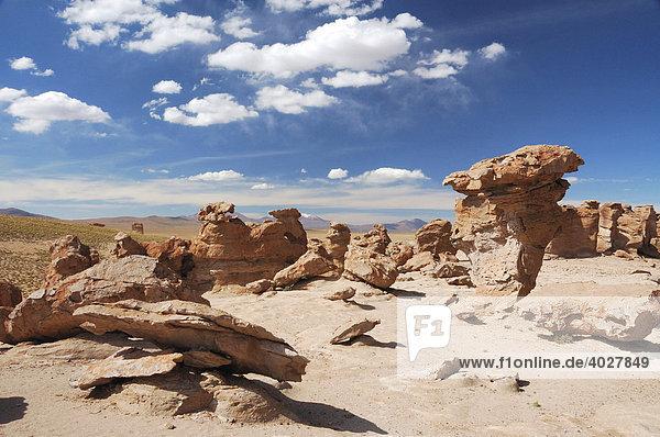 Formationen aus Stein  Altiplano  Bolivien  Südamerika