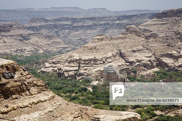 Flussoase  Wadi Dhar  Jemen  Naher Osten
