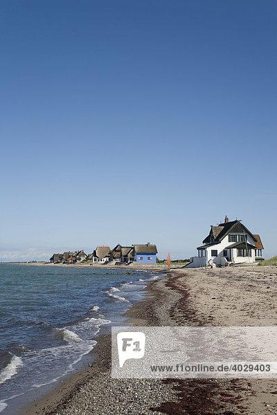 Häuser auf dem Graswarder  Heiligenhafen  Ostsee  Schleswig-Holstein  Norddeutschland  Deutschland  Europa