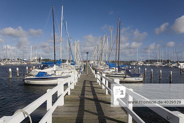 Yachthafen von Burgtiefe auf der Insel Fehmarn  Schleswig-Holstein  Deutschland  Europa