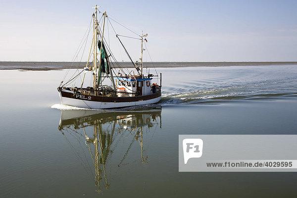 Krabbenkutter in ruhiger See  Nordsee  Schleswig-Holstein  Deutschland  Europa
