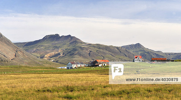 Bauernhof bei Höfn  Südostküste  Island  Europa