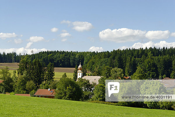 Filialkirche St. Martin  Ischl  Chiemgau  Oberbayern  Bayern  Deutschland  Europa