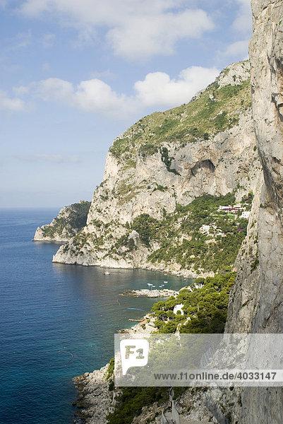 Südküste  Steilküste  Insel Capri  Kampanien  Süditalien  Italien  Europa