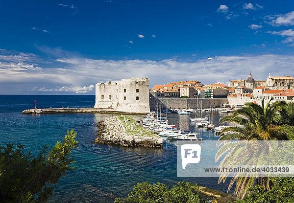Hafen und Altstadt von Dubrovnik  Ragusa  Dubrovnik-Neretva  Dalmatien  Kroatien  Europa
