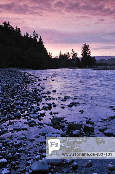 Flussufer im Morgenlicht  Olympic Nationalpark  Washington  USA  Nordamerika