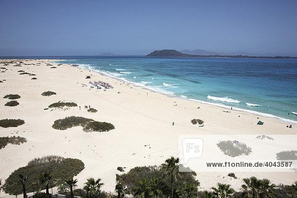 Dünenstrand  Grandes Playas  im Norden der Insel bei Corralejo  Fuerteventura  Kanarische Inseln  Spanien  Europa