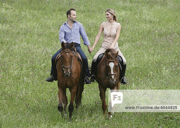 Reiter und Reiterin auf Pferden reiten Hand in Hand über