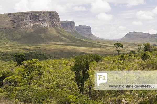 Chapada Diamantina  Nationalpark mit Tafelberglandschaft  Bahia  Brasilien  Südamerika