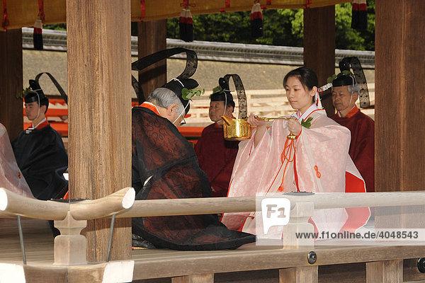 Eine Tempeldienerin im Kimono bedient Shinto-Priester bei der Andacht im Shimogamo Schrein vor der Prozession zum Berg Mikage in Kyoto  Japan  Asien