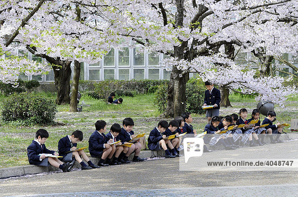 Schüler in Uniform einer Elitegrundschule beim handlungsorientierten Unterricht im Botanischen Garten in Kyoto  Japan  Asien