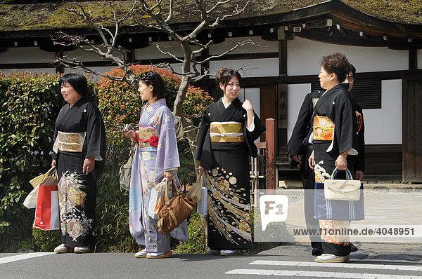 Japanerinen im Kimono besuchen den Kamigamo Schrein in Kyoto  Japan  Asien