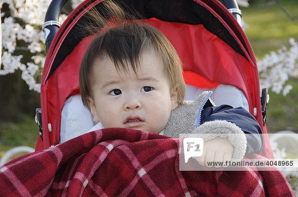 Japanisches Baby im Kinderwagen  Kyoto  Japan  Asien