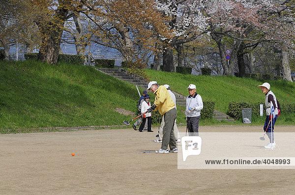 Eine Art Gateball wird von japanischen Senioren gespielt während der Kirschblüte am Kamo Fluss  Japan  Asien