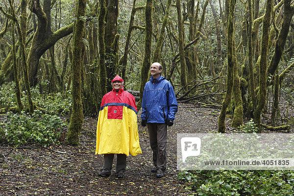 Wanderer mit Regenumhang im Nebelwald,  Nationalpark Garajonay,  La Gomera,  Kanaren,  Kanarische Inseln,  Spanien,  Europa, Garajonay Nationalpark