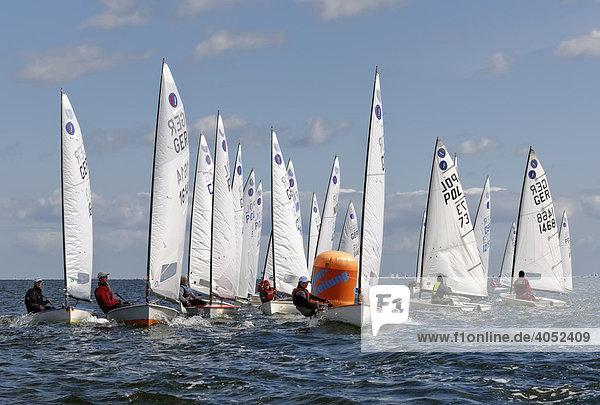 Segel-Regatta auf der Kieler Woche 2008  Kieler Förde  Schleswig-Holstein  Deutschland